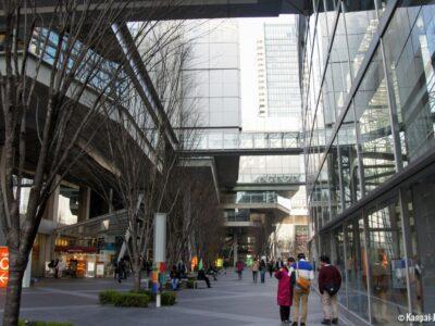 АРФП на форуме в Токио