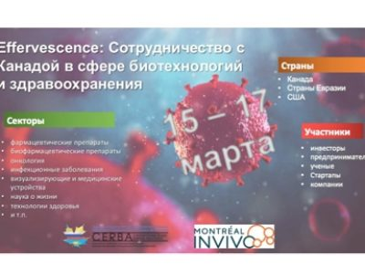 Effervescence_анонс рус-1